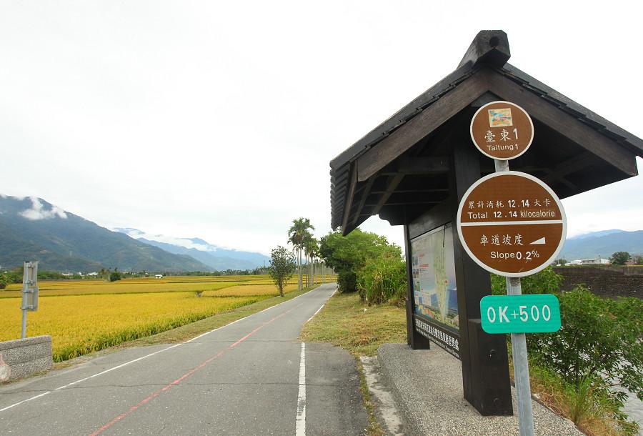 台東景點 關山自行車道11