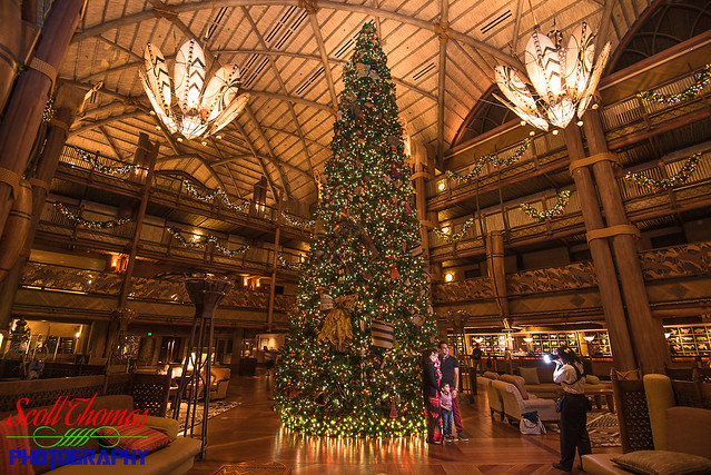 Disney's Animal Kingdom Lodge Christmas