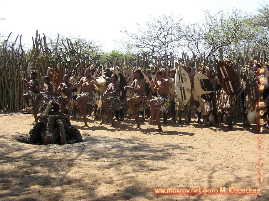 Национальный Парк Крюгера ЮАР  (6)