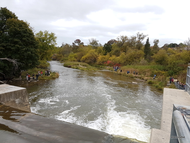 Port Hope Ganarsaka Fish Ladder