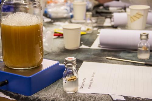 2017.11.12 Workshop: Yeast Hunting