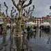 Mercado pasado por agua