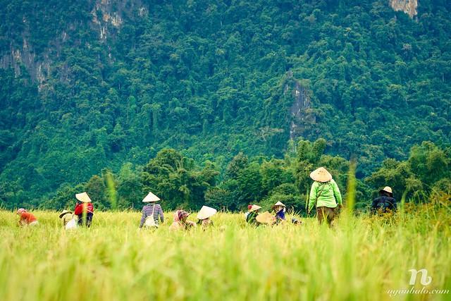 Nhật ký du lịch bụi Lào (2): Hai ngày bình yên ở Vang Vieng: Đồng quê, Blue Lagoon và Phangern View Point