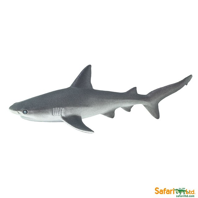 Lemon Shark Toys : Safari new for animal toy forum