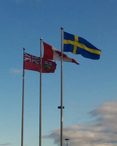 The patriotic blue and gold, among others #toronto #ikea #ikeaetobicoke #flags #ontario #canada #sweden