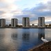 Southmere Lake and the swan