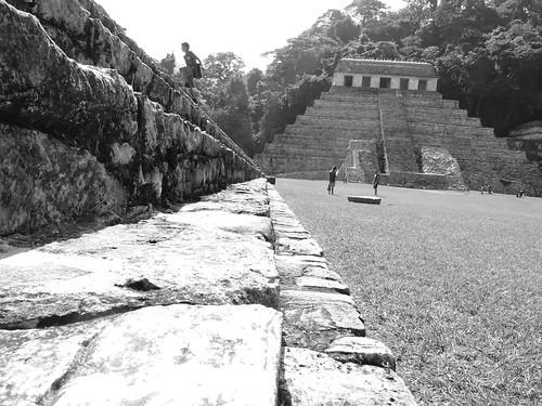 Palenque No.4 OP 77