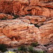 Red Rock Canyon Texture