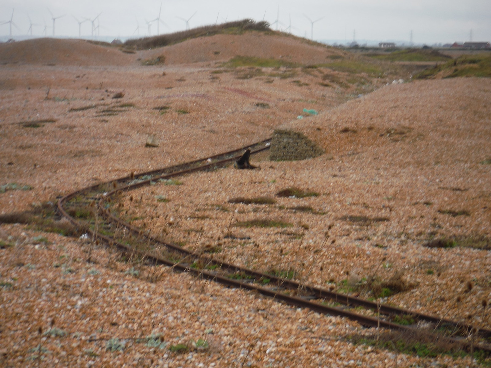 Target Railway, Lydd Ranges SWC 154 - Rye to Dungeness and Lydd-on-Sea or Lydd or Circular