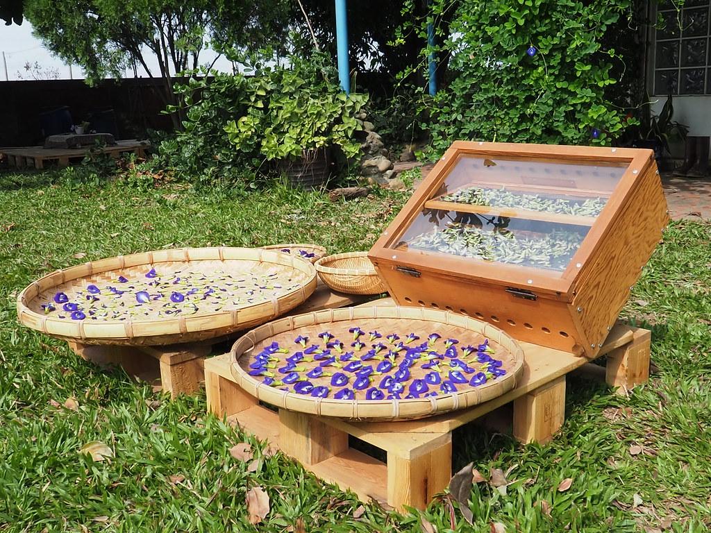 水林小秧自然農場 (9)