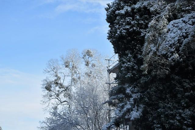 Road to Langendorf 01.12 (26)