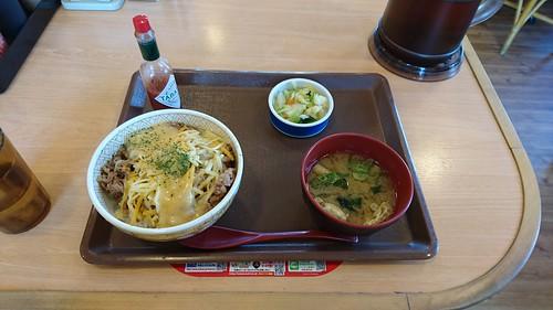 岡崎のすき家でお昼  気持ち長めに休憩