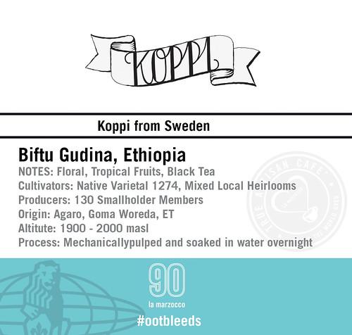 Koppi3