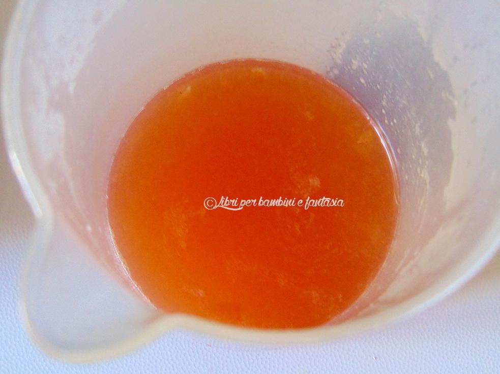 gelatina preparazione