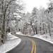 Canyon Snow Drive