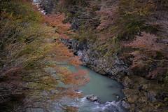 2017.11.12 奥多摩 愛宕大橋より多摩川