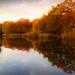 Wake Valley Pond, Epping - dawn 03 by Marek Ziebart