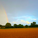 DSC_0041 HDR Scawby North Lincolnshire Cornfields Summer Rainbow High-dynamic-range imaging