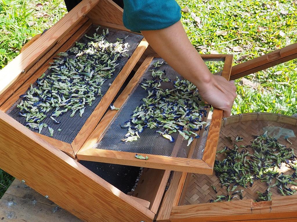 水林小秧自然農場 (10)