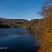 2017 Nov 04 - Loch Faskally reflections 11