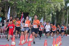 RYmarathon2017_Higlight-143