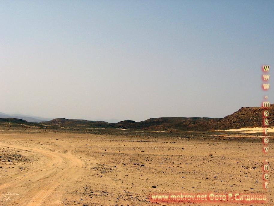 Синайская пустыня фоторепортажи