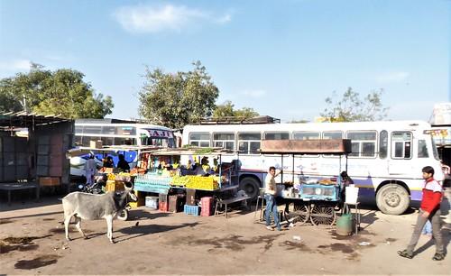 i-Bundi-Pushkar-route (7)