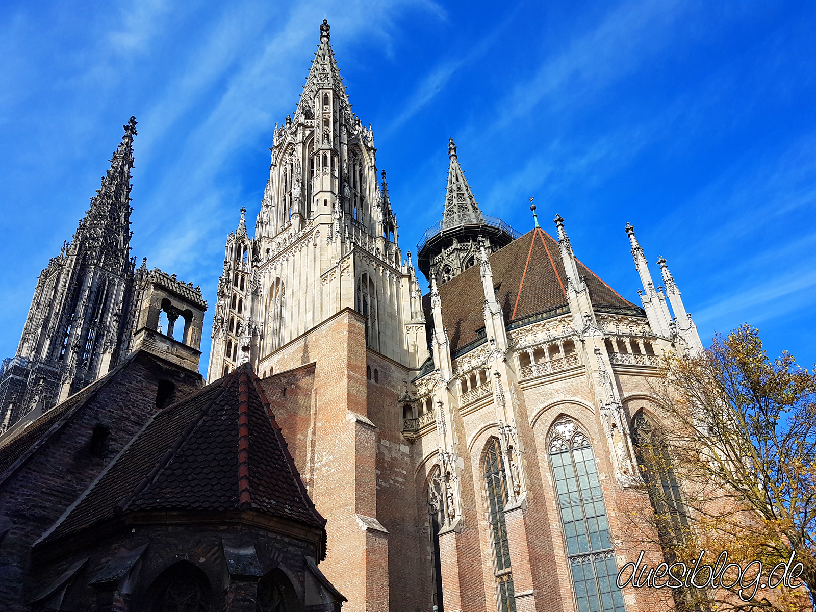 Ulm Muenster travelblog duesiblog 37