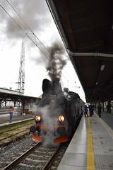 Polish Steam Specials