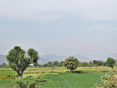 i-jodhpur-mount abu-route  (16)