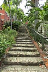 St Thomas - 99 Steps