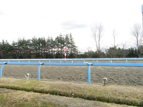 金沢競馬場の内馬場から走路を見る