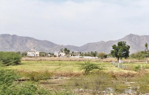 i-Bundi-Pushkar-route (20)