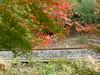 Photo:17o7114 By kimagurenote