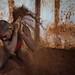 Kushti wrestler in Mysore by puuuuuuuuce