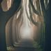 il Fascino della Nebbia by Max Lazzi