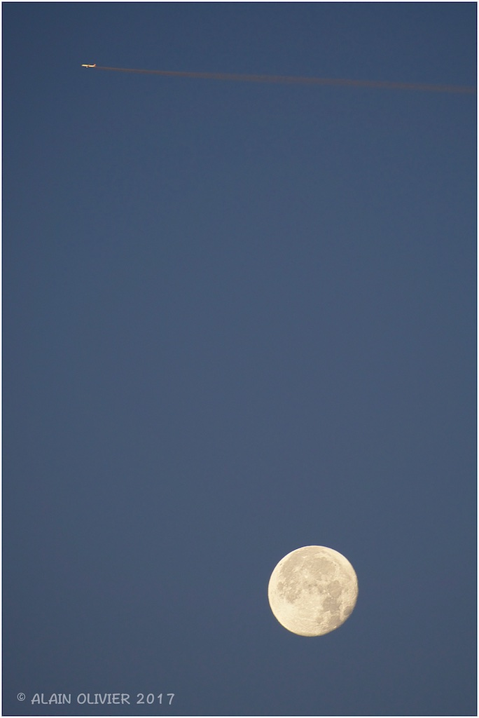 La déjà plus super Lune de ce matin 38845911911_1b93a14a70_o