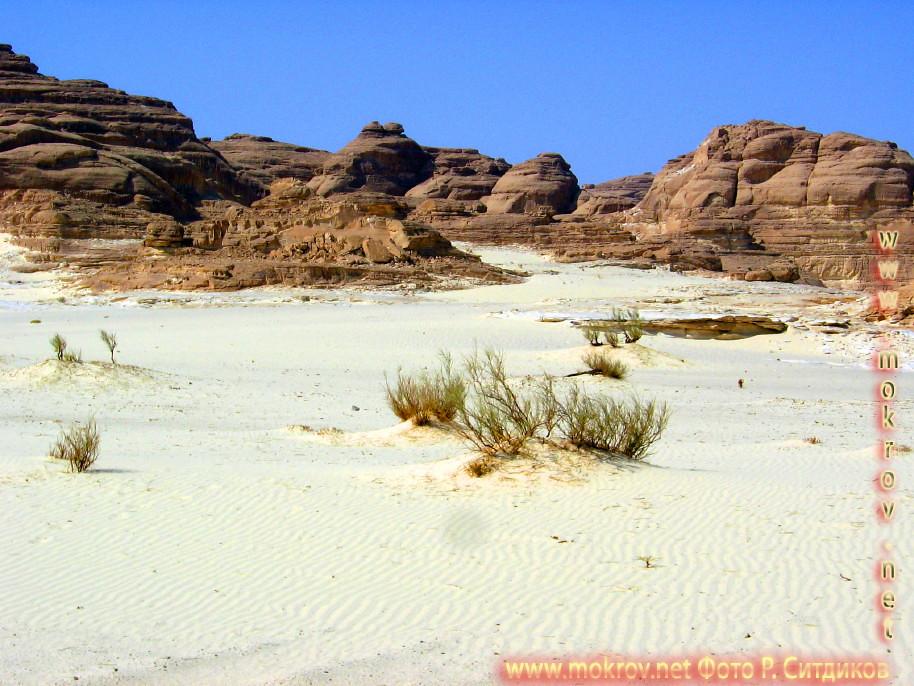 Синайская пустыня пустыня, белый каньон фото достопримечательностей