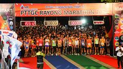 RYmarathon2017_Higlight-66