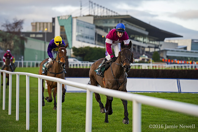 Rogue Angel canters to the post for the Paddy Power Steeplechase at Leopardstown