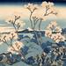 Lo sapevate? Hokusai fu uno dei primi ad utilizzare il blu di Prussia, un colore assolutamente nuovo che aveva cominciato ad essere importato in Giappone proprio intorno al 1830. Fu grazie a Hokusai che il Berlin Blu (berorin ai) rivelò tutte le sue poten