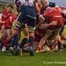 Bristol's Jason Harris-Wright scores the gamebreaking try-3172
