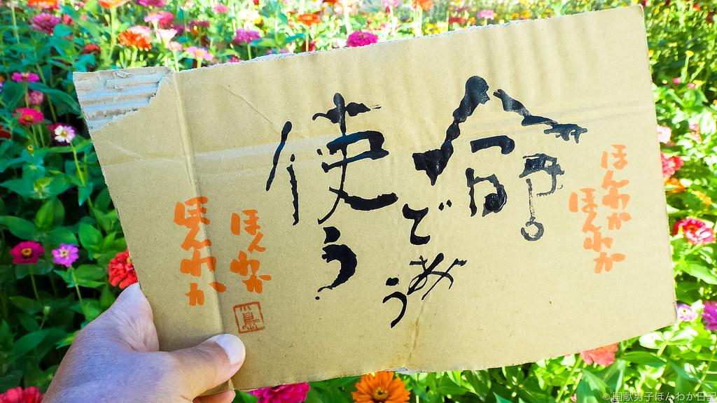 小僧落書き、背景はキジル千仏洞の花たち(撮影:筆者)