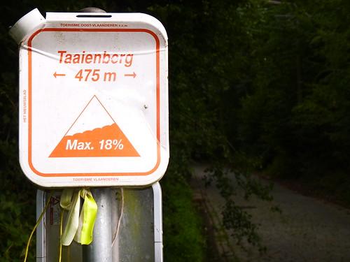 Taaienberg