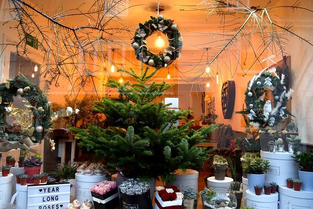Lady Penelopy's Florist Christmas Windows, Canterbury #christmas