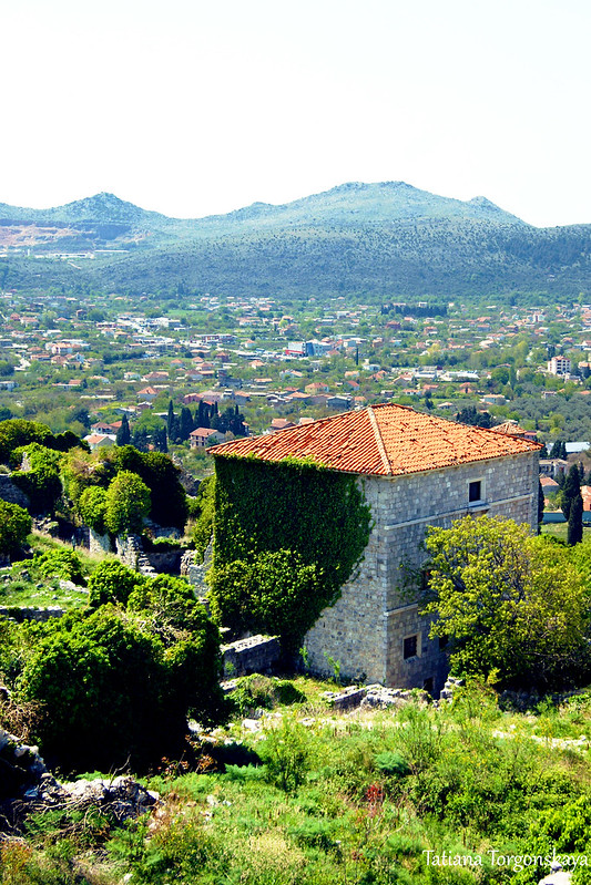 Вид на фрагмент Старого города с дворцом
