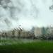 160 of Year 4 - November rain