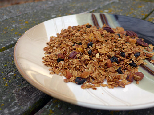 2017-11-12 - Blueberry Granola - 0003 [flickr]