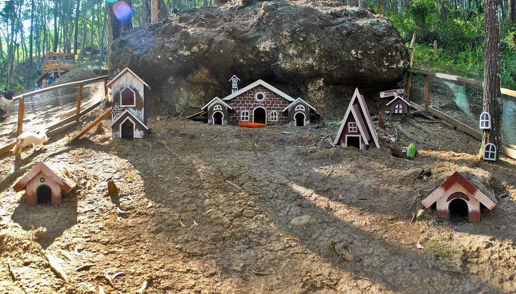 Rumah Kelinci Becici