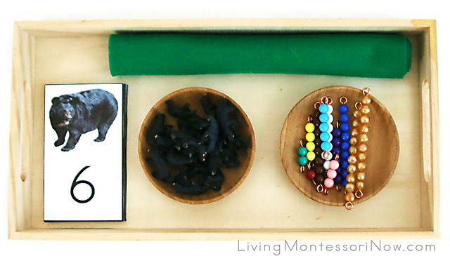 Matching Numerals with Miniature Bears and Bead Bars